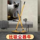 寵物除毛拖把地毯掃毛神器掃狗毛貓毛除毛刷除毛掃把吸毛器粘毛器安妮塔小舖
