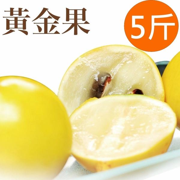 新鮮上市【樂品食尚】自然農法黃金果5斤(每粒10兩以上,約8~10顆)(免運宅配)