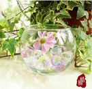 魚缸圓球花瓶2個組