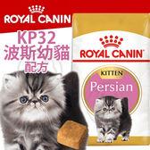 【zoo寵物商城】FBN 新皇家飼料《波斯幼貓KP32配方》10KG