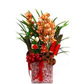 幸福婚禮小物❤東亞蘭花盆栽❤ 新年祝賀/過年送禮/應景盆栽