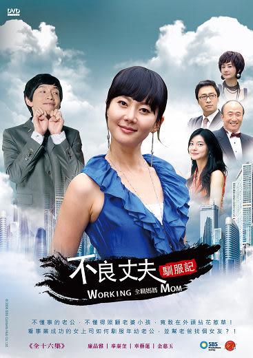 不良丈夫馴服記(全職媽媽) DVD【韓語版】( 廉晶雅/車藝蓮/奉太奎 )