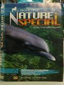 挖寶二手片-O08-015-正版DVD*紀錄【探索動物大百科-水中芭蕾舞者/Discovy】-