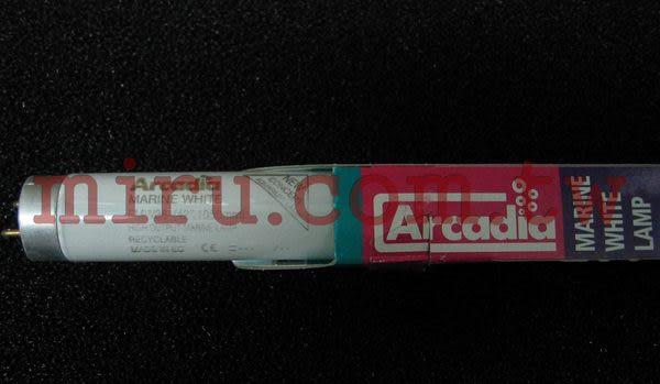 【西高地水族坊】英國阿卡迪亞Arcadia 海水長效鹵素燈管MARINE WHITE LAMP T8 FL (38w)