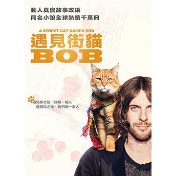 遇見街貓BOB (貓奴限定版) DVD A Street Cat Named Bob 免運(購潮8)