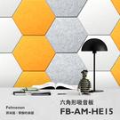 特殺/吸音板/隔音板/隔音墊 日本Felmenon 六角形吸音板(一片裝)【FB-FM-HE15】
