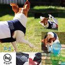 ★OBO CLUB HOUSE☆犬と生活...