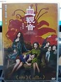 挖寶二手片-P03-161-正版DVD-華語【血觀音】惠英紅 吳可熙(直購價)
