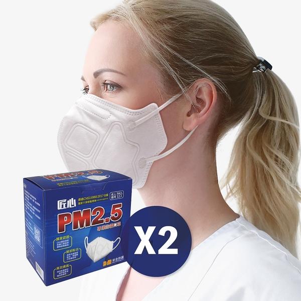 【匠心】PM2.5專業3D立體防霾口罩-12入/X2盒-免運