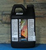 【西高地水族坊】美國BWA BlackWater 亞馬遜黑水精華液 2L
