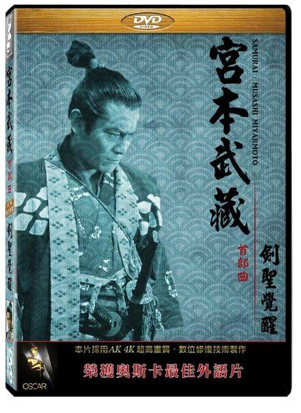 宮本武藏首部曲:劍聖覺醒 DVD (音樂影片購)