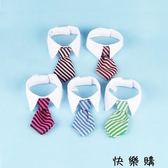 寵物用品狗狗項圈領帶