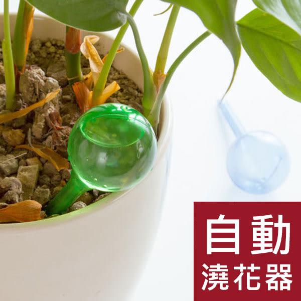 【大2入】圓球自動澆花器/懶人澆水器/遠行澆花器/旅遊澆花器/滴水器