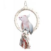 一佳寵物館 鸚鵡玩具用品圓圈吊環攀爬磨嘴站杠鳥籠配飾棉繩鳥秋千