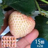 (2盒)天藍果園-大湖白草莓(15顆)含運組