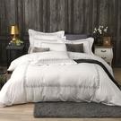 鴻宇 SUPIMA500織 四件式雙人加大兩用被床包組 清雅春芽 刺繡白M2657