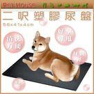 *WANG *【02040420】Pet...