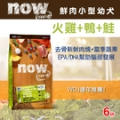 【毛麻吉寵物舖】Now! 鮮肉無穀天然糧 小型幼犬配方-6磅-狗飼料/WDJ推薦/狗糧
