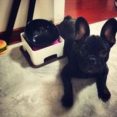 寵物食碗狗碗陶瓷法斗碗日本寵物餐桌泰迪狗狗食盆扁臉貓碗防滑斗 貝兒鞋櫃
