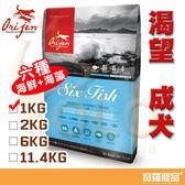 Orijen渴望成犬六種魚1kg【寶羅寵品】