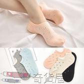純棉襪子女船襪薄款淺口隱形短襪