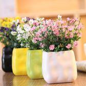 [618好康又一發]雛菊滿天星絹花假花塑料仿真花客廳藝套裝
