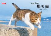 (二手書)飛啊飛啊~飛天貓:2015最療癒的寫真書