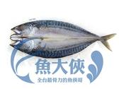 E3【魚大俠】FH056薄鹽挪威鯖魚一夜干(270~300g/尾)