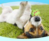 狗玩具  狗玩具發聲球耐咬泰迪寵物金毛幼犬磨牙寵物玩具球法斗柯基玩具