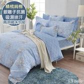 義大利La Belle《蘭卡沁語》特大純棉防蹣抗菌吸濕排汗兩用被床包組