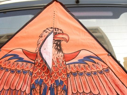 老鷹風箏.三角型(進口大三角布面碳纖維架120cm X 80cm)/一支[#80]