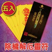 (5入)除穢護身靈符袋《大師特製》財神小舖【LF9005】