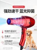 吹風機 寵物吹風機靜音狗狗泰迪博美貓咪大功率大型犬寵物店專用電吹風 jd城市玩家