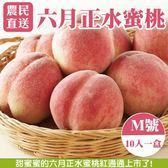 【果農直配】六月正水蜜桃X1盒【2.5斤±10%/盒(含盒重) 每盒10粒】7/1陸續出貨