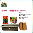 【綠藝家】蔬菜DIY種植組合-中型(型號...