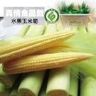 產銷履歷鮮綠水果玉米筍5台斤(含葉)-春...