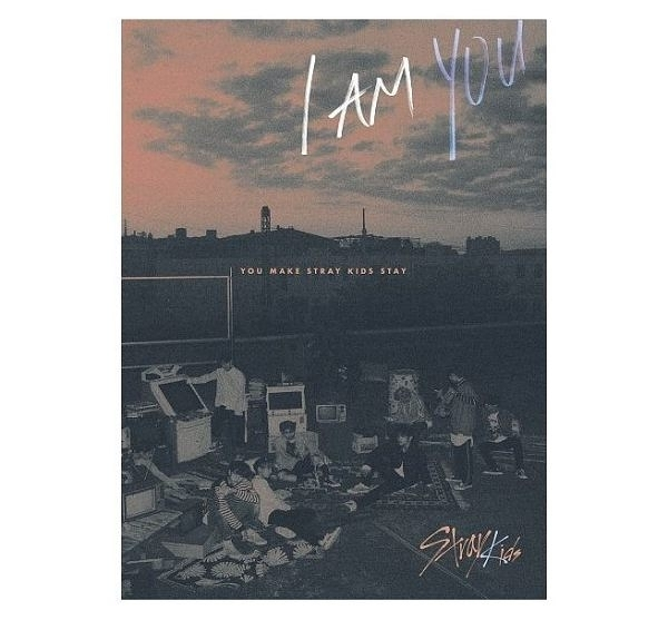 Stray Kids I am YOU Special Edition 台灣獨占精華盤 CD附DVD 免運 (購潮8)