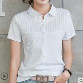 polo衫短袖 t恤女短袖夏季新款洋氣體桖衫純棉有領帶領翻領小衫半袖上衣 曼慕衣櫃