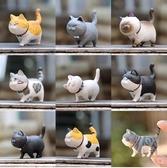 迷妳貓鈴鐺暹羅貓可愛白灰貓咪黑幫家族玩偶公仔蛋糕擺件盲盒禮盒