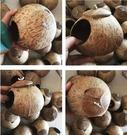 創意椰殼鳥窩椰子殼鳥籠鳥巢擺件裝飾屋