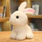 仿真兔子毛絨玩具韓國可愛兔兔公仔小白兔玩偶少女心娃娃小號女生 「青木鋪子」