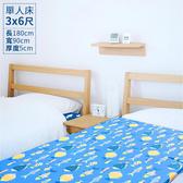 【晴天媽咪】可拆洗舒柔雙布-單人-三折床墊 3x6尺(兩色可選)淺藍