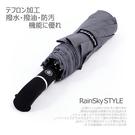 【RainSKY】Classic-48吋...