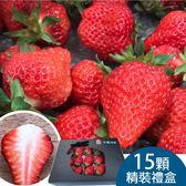 【天藍】大湖草莓15粒黑色精裝禮盒免運組
