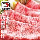 買1送1【海肉管家-全省免運】日本宮崎牛和牛霜降肉片 共2盒(100g±10%/包)