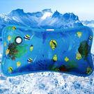 冰枕冰墊水枕冰枕頭兒童成人水枕頭夏季冰墊...