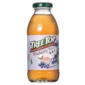 樹頂 藍莓茶360ml【愛買】