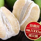 鶴岡老欉文旦柚1箱(5斤/箱)6-8顆