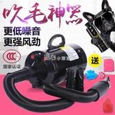 寵物烘毛器寵物吹水機狗狗吹風機大功率靜音吹毛機泰迪大型YJT220v 『獨家』流行館