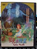 挖寶二手片-P10-164-正版DVD-動畫【孤兒與精靈 國日語發音】-優質卡通 精緻動畫